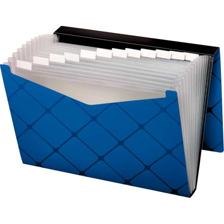 Pocket Expandable File