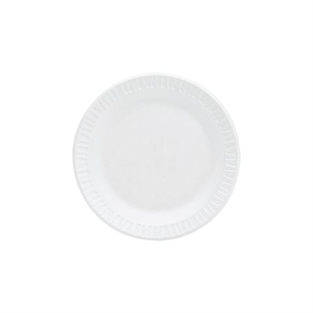 Concorde Disposable plate